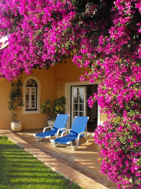 beautiful accessible villa, villa for the disabled, accommodation for disabled holidays, portugal